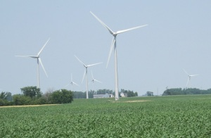 Wind-Turbines-and-cornfield-2