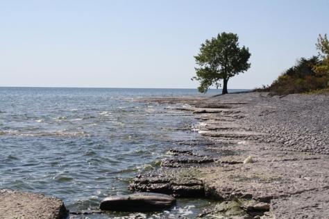 ostrander point shore
