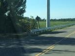 Guardrails of Niagara Wind