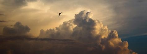Sky-vista_iiiphevgeniy_Shutterstock