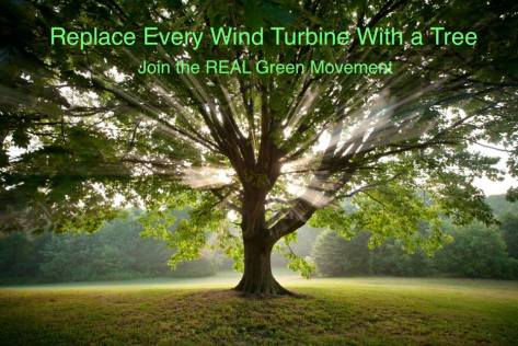trees not wind turbines