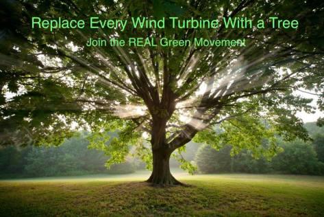 trees not wind turbines