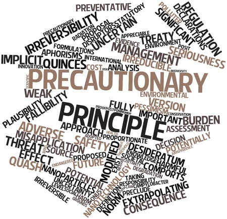 precautionary principle word map