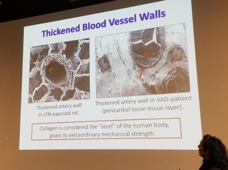 thicken blood vessels